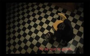 Tango Libre by Paola Bordon
